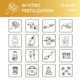 In vitro fertilization set Vector isolated Illustration on white background for menus, recipes and packages product. In vitro fertilization collection Vector Stock Images