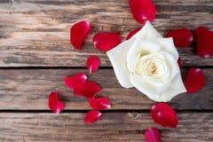 Vitros och röda kronblad på gammal träromantisk och bästa sikt för tabell, Royaltyfria Foton