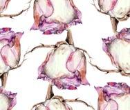 Vitrosen, vattenfärg, mönstrar sömlöst Arkivfoto