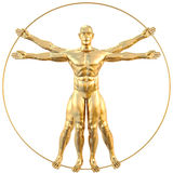 Vitruvian Royalty Free Stock Image