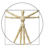 Vitruvian del Leonardo Da Vinci Fotografie Stock