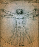 Vitruvian人- Leonardo Da Vinci 库存照片