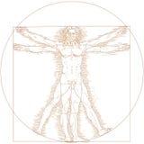 Vitruvian man Stock Image
