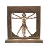 Vitruvian man arkivbild