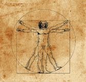 Vitruvian man. A highly stylized drawing of vitruvian man with crosshatching and sepia tones Royalty Free Stock Photo