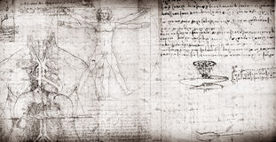 Vitruvian Man Royalty Free Stock Image