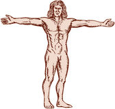 Vitruvian Man Arms Spread Front Etching Stock Photo