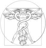 Vitruvian Man Caduceus. Caduceus medical symbol Vitruvian man concept with figure like Leonard Da Vinci anatomy drawing Royalty Free Stock Images