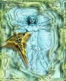 Vitruvian man - Caduceus - medicin vektor illustrationer