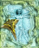Vitruvian Man - Caduceus - Medicine Royalty Free Stock Images