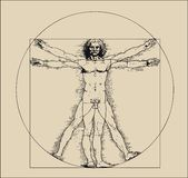 Vitruvian man with crosshatching and sepia tones vector illustration