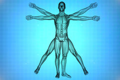 Vitruvian man with DNA. Vitruvian man with skeleton for study on a blue background stock illustration