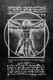 Vitruvian Man сhalk drawing Stock Photography