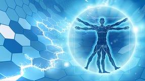 Vitruvian Man Hexagon Background Stock Photos