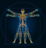 Vitruvian man Stock Images