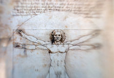 Vitruvian Man - Leonardo Da Vinci. Vitruvian Man drawing from 1492 by Leonardo Da Vinci.Blurred edges created with a shift lens (Lensbaby®) and +4 Macro lense royalty free stock photography