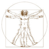 Vitruvian Man by Leonardo Da Vinci. Vector illustration Royalty Free Stock Photos