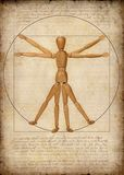 Vitruvian Man (A Modern Rendition). Modern graphical rendition of the Vitruvian man Royalty Free Stock Images