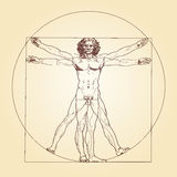 Vitruvian-Mann Leonardo da Vinci Lizenzfreies Stockfoto