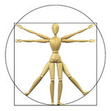 Vitruvian mannequin Royalty Free Stock Images
