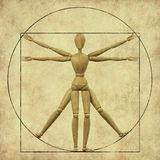 Vitruvian mannequin Royalty Free Stock Photo
