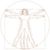 Vitruvian woman Stock Photo