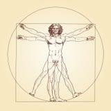 Vitruvianmens Leonardo da Vinci Royalty-vrije Stock Foto