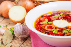 Vitrysk nationell soppacloseup Fotografering för Bildbyråer