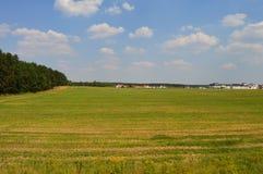 Vitryska fält Arkivbild
