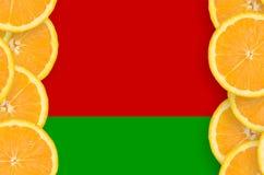 Vitryssland flagga i vertikal ram för citrusfruktskivor royaltyfria foton