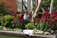 Vitt bröllopparaply i en grön trädgård bland blommor Arkivfoto