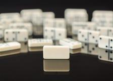 Vitt domino med singelmellanrumsdominobricka Royaltyfri Fotografi