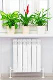Vitt element för uppvärmning med blomman och fönstret arkivfoton