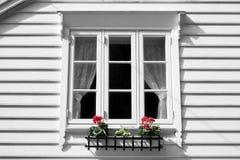vitt fönster Royaltyfria Foton