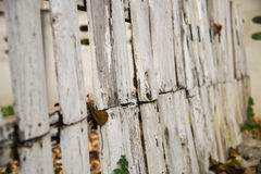 Vitt gammalt wood staket Arkivbilder