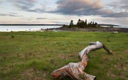 Vitt hav Fotografering för Bildbyråer