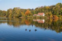 Vitt hus på sjön arkivfoto