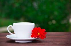 Vitt kopp och tefat och röd blomma på en grön bakgrund En kopp te och en blomma mot bakgrunden av en sommar arbeta i trädgården Royaltyfri Bild
