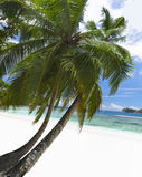 Vitt korallstrandsand och azureindierhav. Royaltyfria Foton