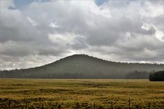 Vitt landskap för bergApache reservation, Arizona, Förenta staterna Royaltyfri Fotografi