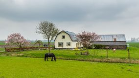 Vitt litet lantbrukarhem Arkivfoto