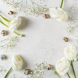 Vitt mode, blommor lägger framlänges bakgrund arkivfoto