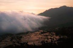 Vitt moln av mist som skriver in och täcker ett risfältlandskap i en dal mellan berg på solnedgången Royaltyfri Fotografi