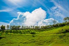 Vitt moln i blå himmel med grönt gräs Arkivfoto