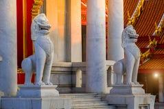 Vitt mytiskt vaktlejon framme av den berömda marmortemplet i Wat Benchamabophit arkivfoto