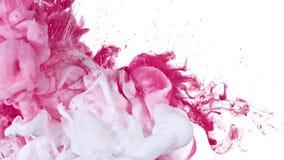 Vitt och rosa färgpulver i vatten royaltyfri foto