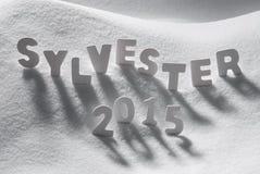 Vitt ord Sylvester 2015 nya år Eve On Snow för hjälpmedel Royaltyfri Bild