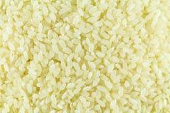 Vitt ris är en näve för det hela fotoet wallpaper fotografering för bildbyråer