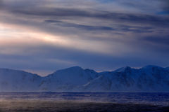 Vitt snöig berg, blå glaciär Svalbard, Norge Is i havet Isbergskymning i nordpolen Rosa färgen fördunklar med isisflak _ Arkivbild