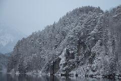 Vitt snöig berg på Alpsee sjön i vintertid germany Arkivbilder